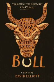An image of the Bull book cover.