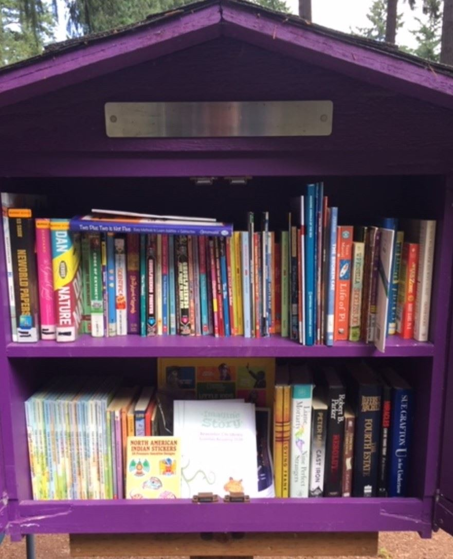 Image of Little Free Library on Forest Dr.